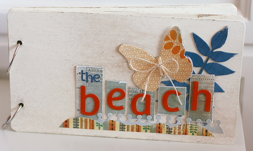 fetching-beach